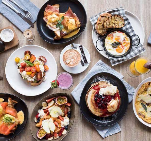 breakfast haberfield